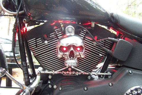 NEW HORN COVER FOR HARLEY DAVIDSON 93 TO PRESENT FITS ALL BIG TWINS!!